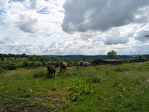 TEXT_PHOTO 1 - Proche LIVAROT, plus de 3 hectares