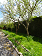 TEXT_PHOTO 5 - 15 min BERNAY, maison plain-pied 130 m²
