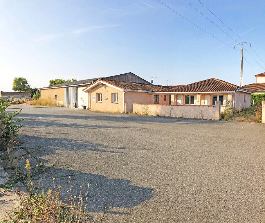 Locaux d'activité à louer Toulouse- la Glacière de 338, 387 et 787 m² environ