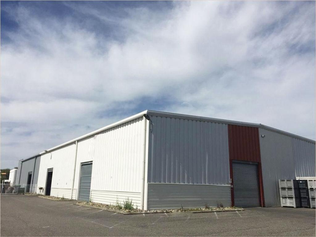 ZI THIBAUD - Local d'activité à louer Toulouse de 924 m2