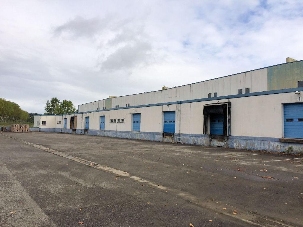 Entrepôt SEVESO à vendre à Grisolles 6 526 m2