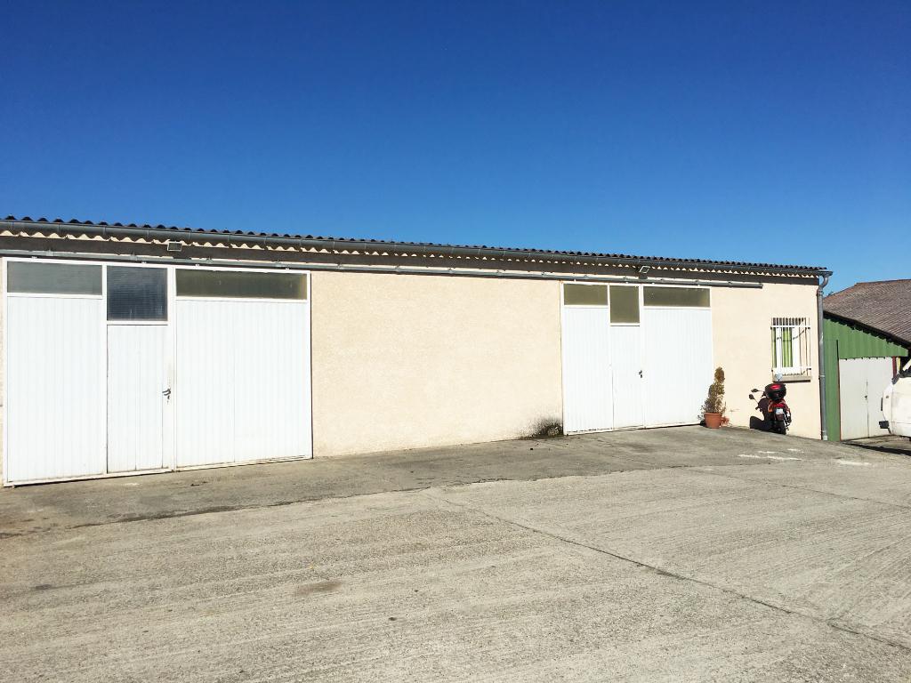 Locaux d'activités à louer Montrabé de 260 m²