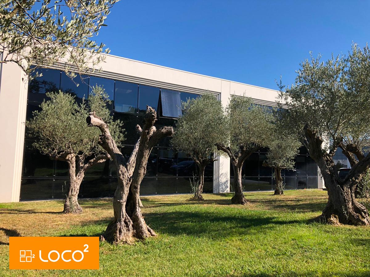 Greenpark - Colomiers surfaces de bureaux de standing