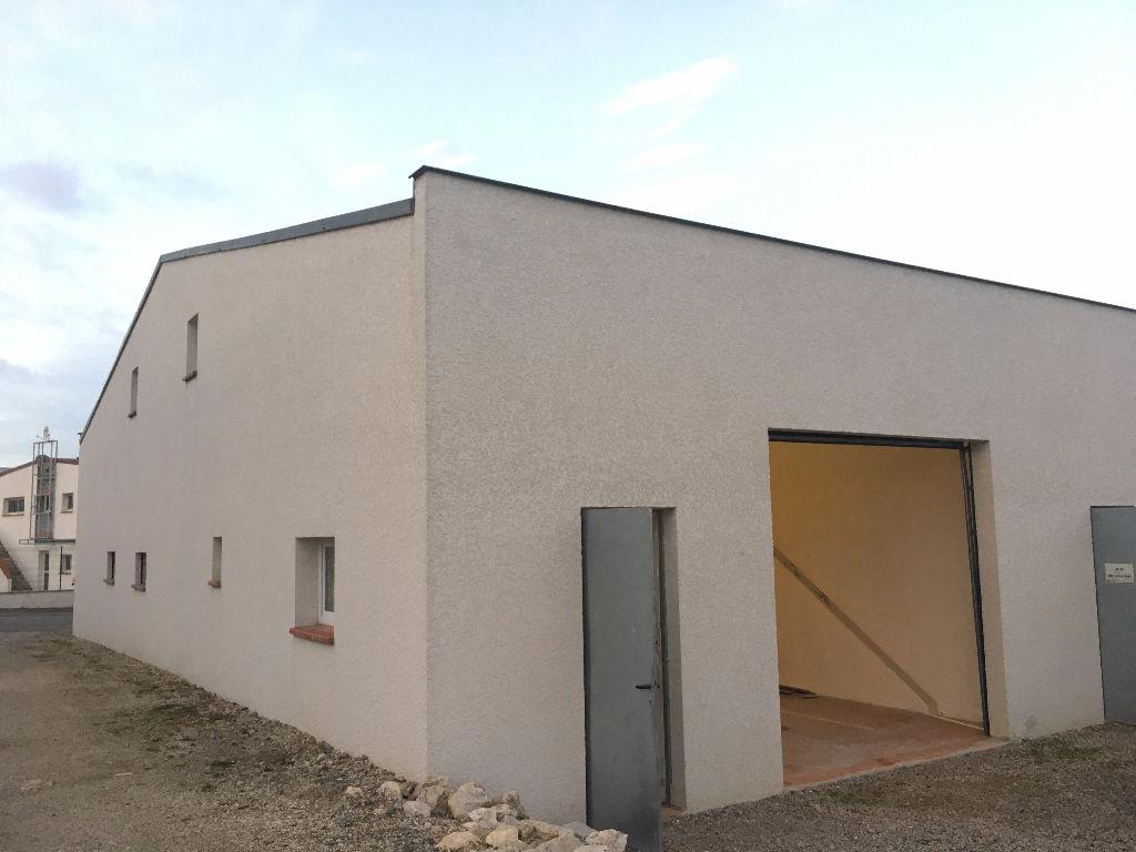 Entrepôt / local industriel Rouffiac Tolosan