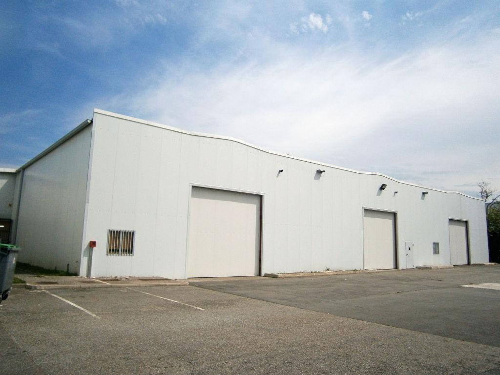 Location locaux d'activité entrepôt Toulouse