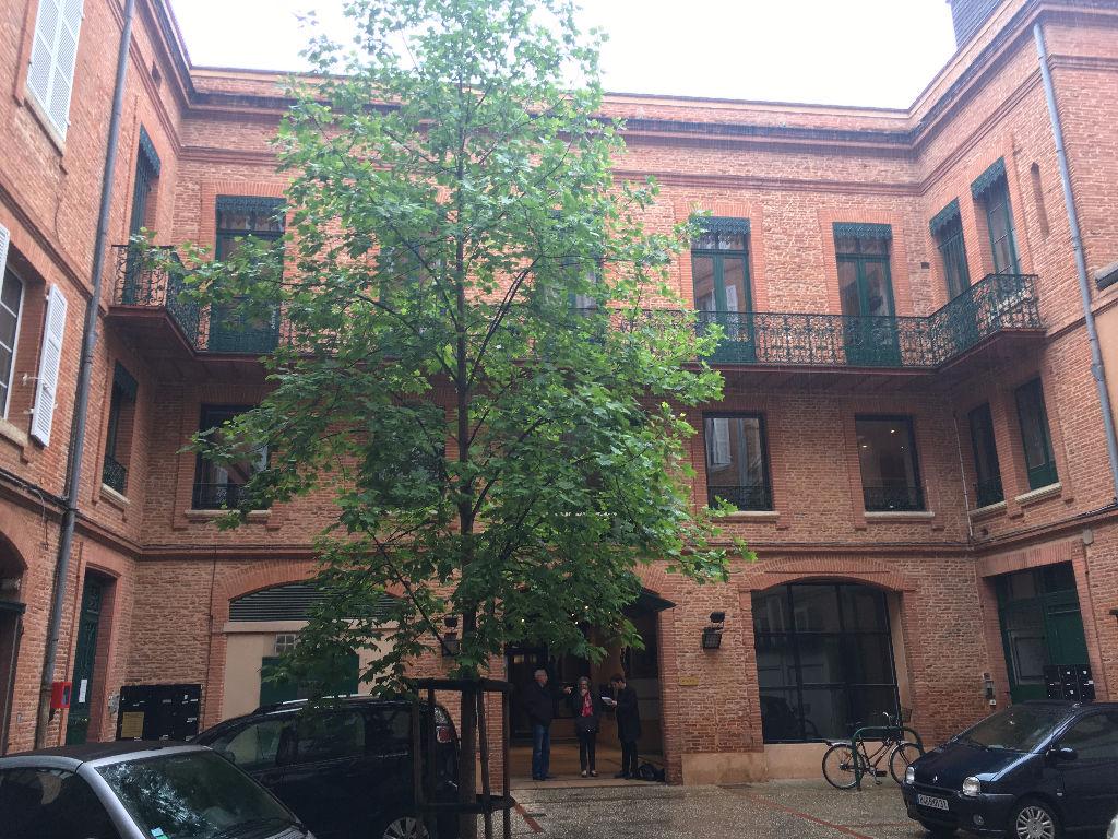 Bureaux à louer Toulouse hyper-centre 255 m2