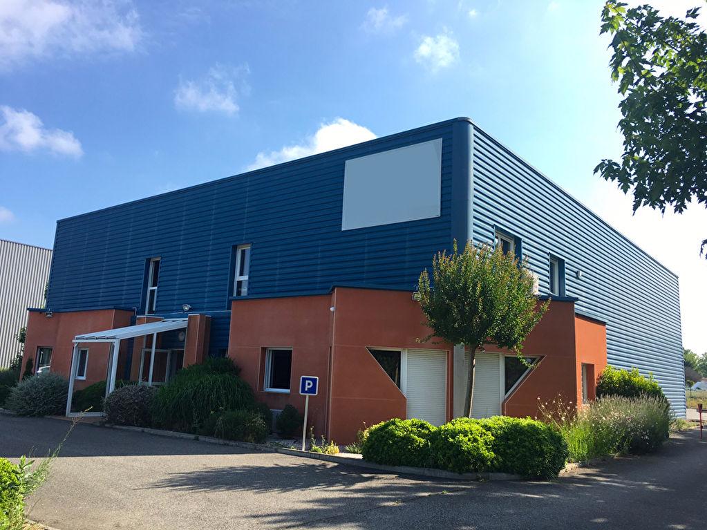 Location local d'activité de 640 m² à Castelnau D'Estretefonds