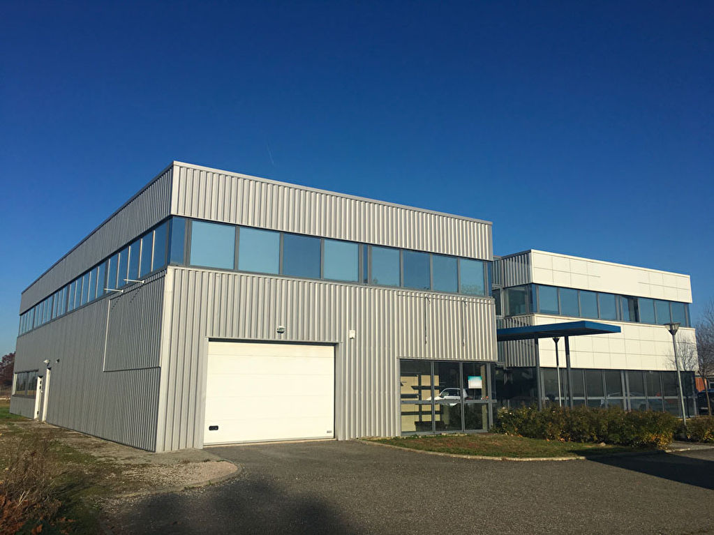 Local d'activité/mixte à louer à Cornebarrieu 518 m² divisibles