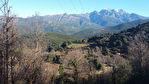 TEXT_PHOTO 0 - Terrain Carbuccia 3007 m2
