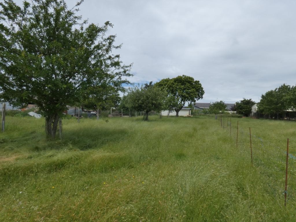 Terrain Guer 1800 m2