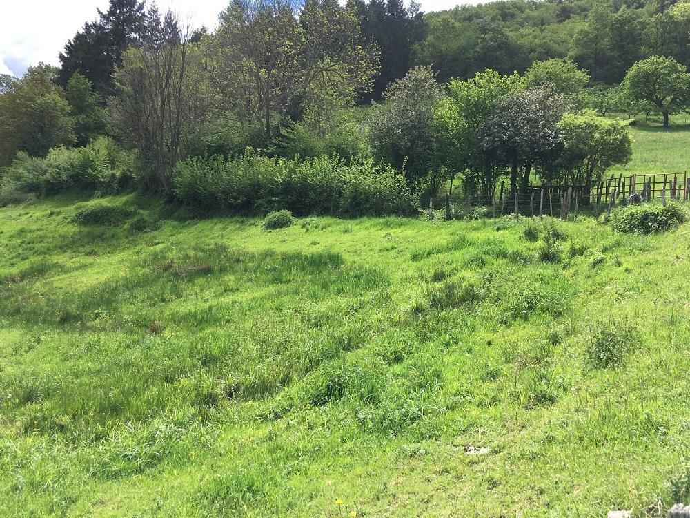 Terrain viabilisé de 1325 m² à 10 minutes de L'ARBRESLE