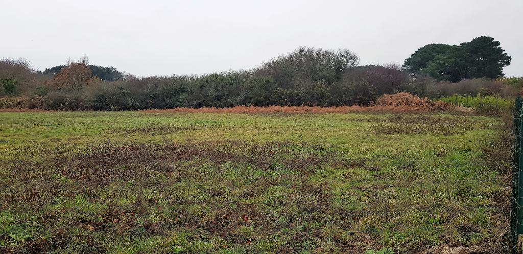 Beau terrain dans quartier calme à Plomeur
