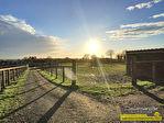 TEXT_PHOTO 4 - Propriété équestre et entrainement, 11 hectares