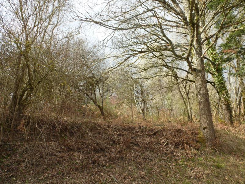 Sur les hauteurs de Saint-Eloy-Les-Mines, terrain constructible non viabilisé de 2282 m2.