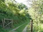 Martel : terrain avec bois non constructibles d'environ 3 ha.