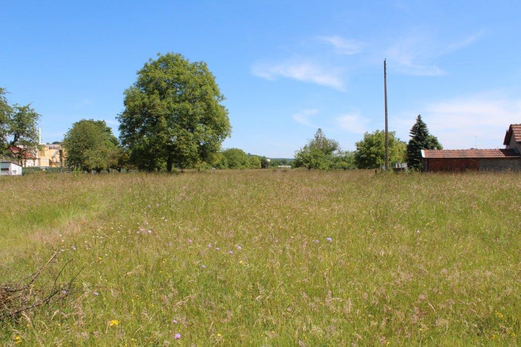 A vendre Terrain TRONVILLE EN BARROIS 700m² 32.000