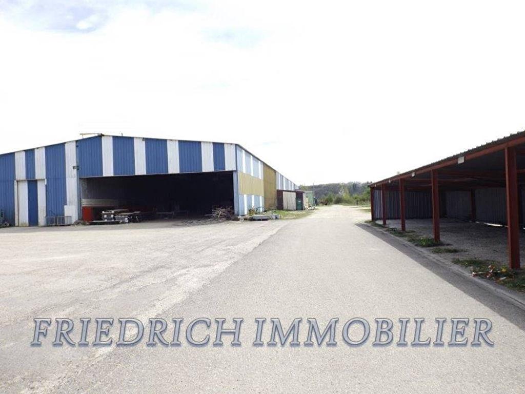 A vendre Entrepôt / Local industriel REVIGNY SUR ORNAIN 2305m² 320.000 10 piéces
