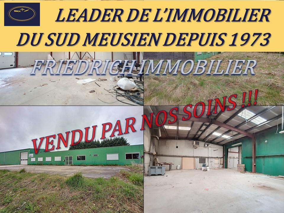 A vendre Entrepôt / Local industriel DAMMARIE SUR SAULX 163.000  piéces