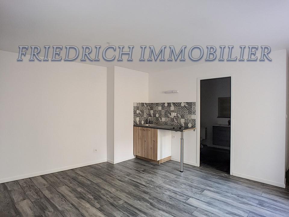 Appartement 55200 1 pièce(s) 30 m2