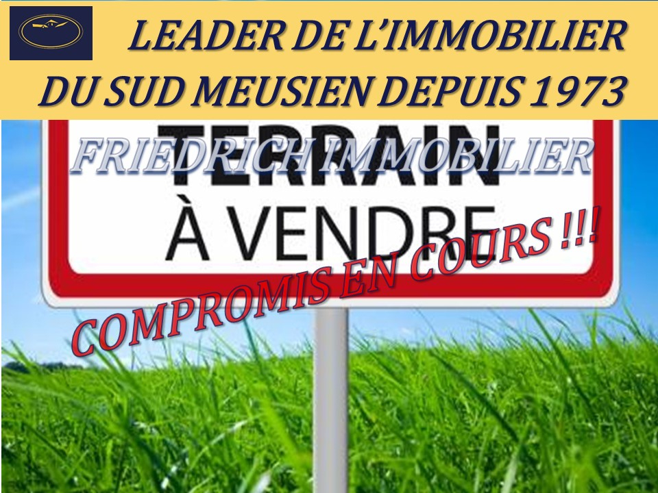 A vendre Terrain GONDRECOURT LE CHATEAU 1013m²