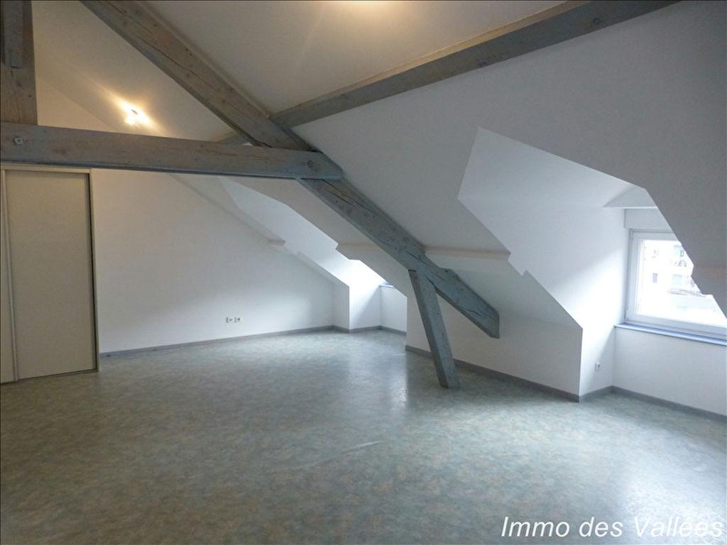 LA BRESSE Hypercentre - T3 + Garage en excellent état