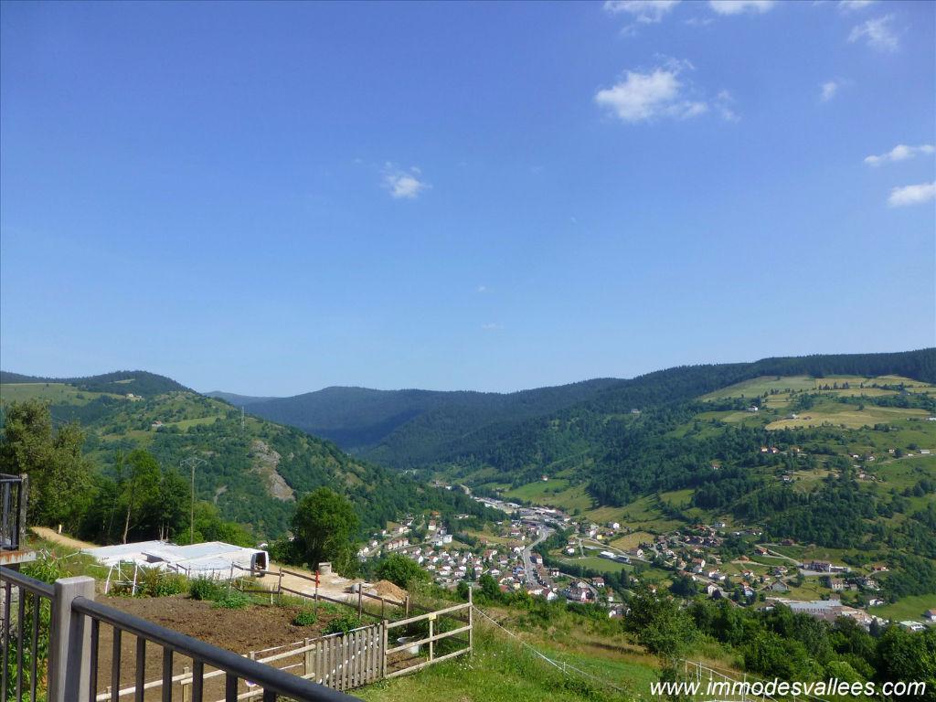 LA BRESSE - Studio vue panoramique à vendre