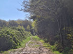 CHOLET Propriété equestre avec activités en cours sur 15 hectares