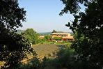 Villa Pernes 260 m² sur 2 hectares