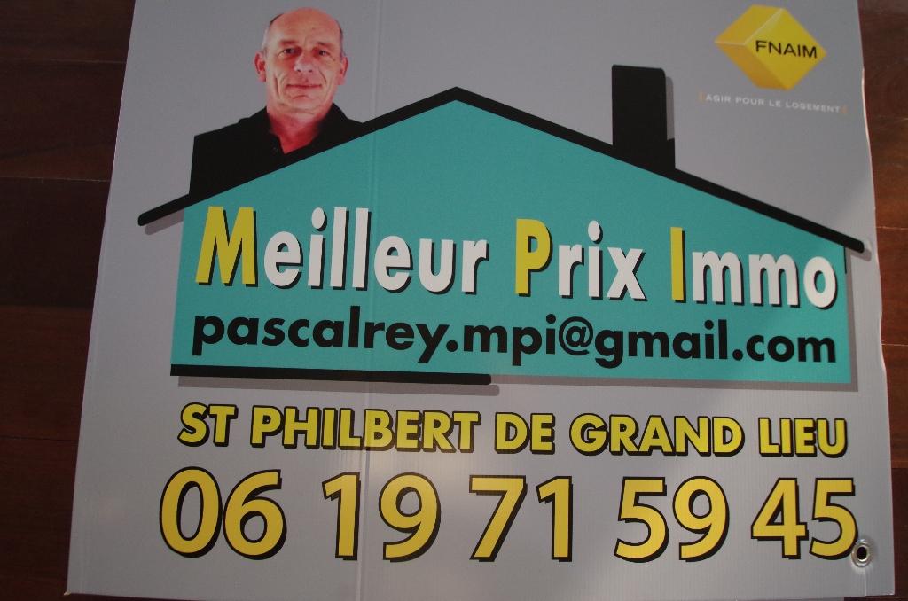 Terrain Saint Philbert De Grand Lieu 369 m2  centre ville