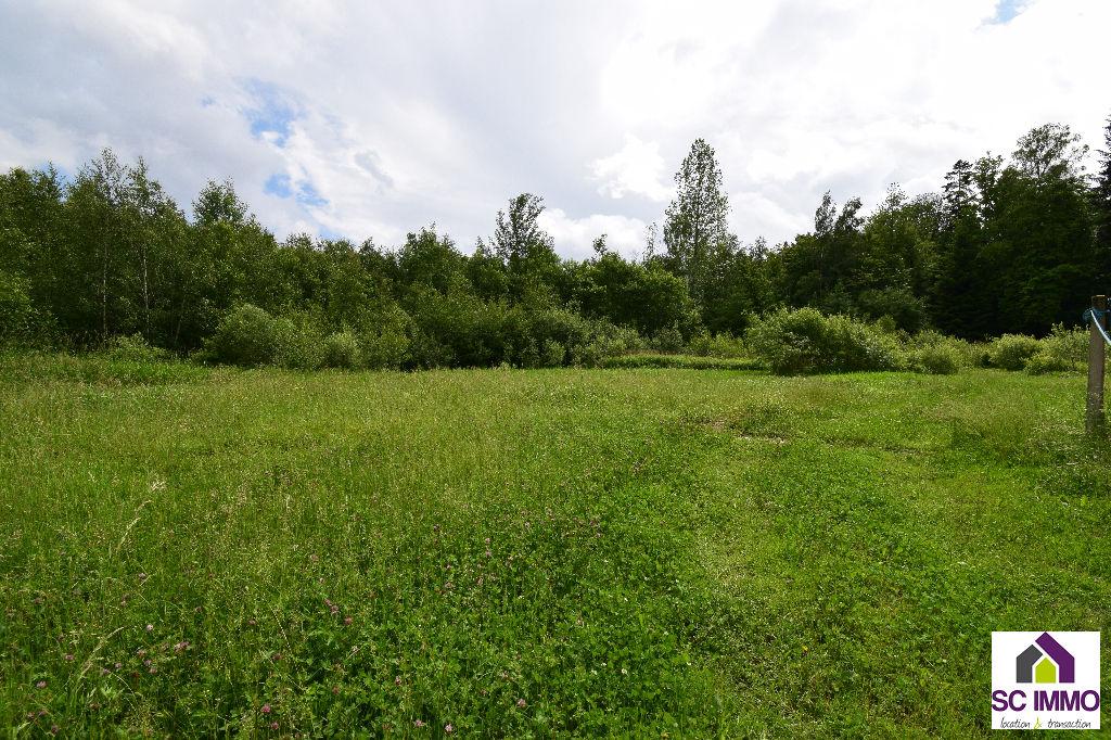 Terrain Saulcy Sur Meurthe 2788 m2