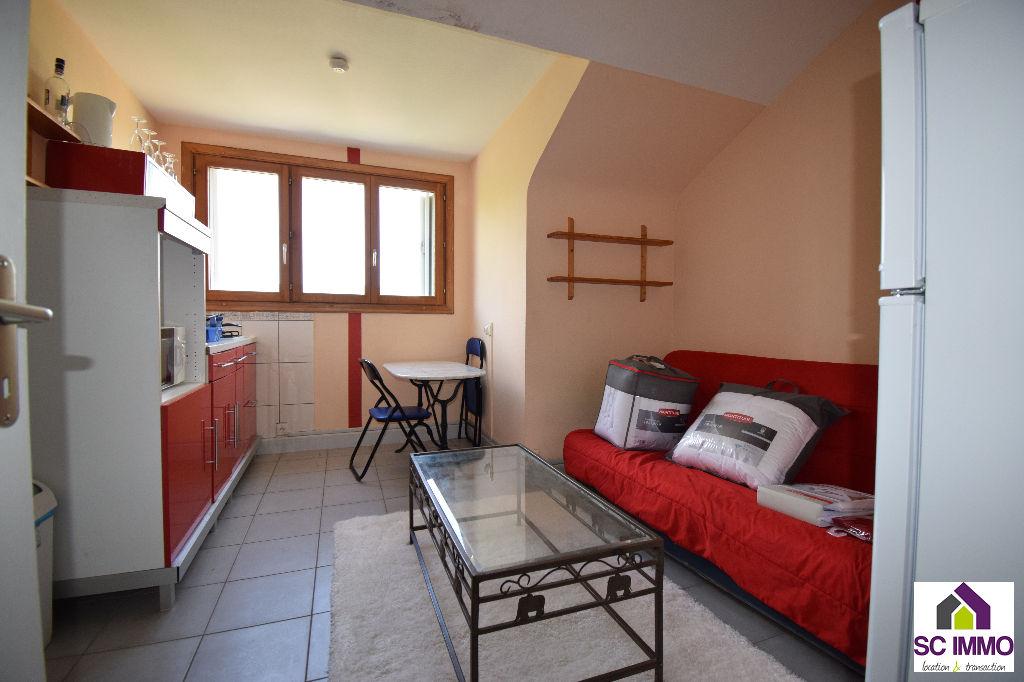 Appartement meublé Saint Die Des Vosges 1 pièce