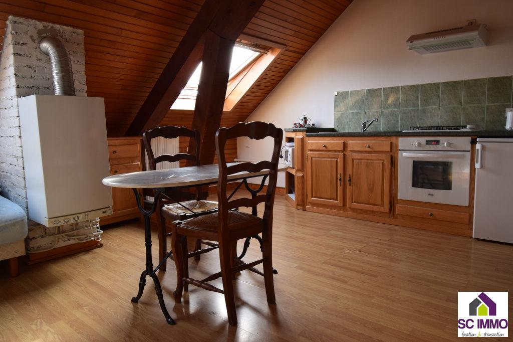 Appartement Saint Die Des Vosges 1 pièce - 30 m2