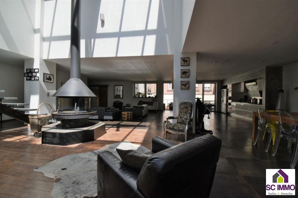 LOFT+ Terrasse et jardin -   SAINT-DIE