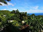 TEXT_PHOTO 0 - P.R.M.I: Appartement T2 vue mer a vendre a la Montagne dans residence securisee avec piscine