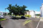 TEXT_PHOTO 0 - PRMI Appartement Saint André défiscalisable en Girardin hors plafonnement des niches fiscales